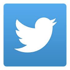 twitter shares